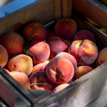 peaches 2892013